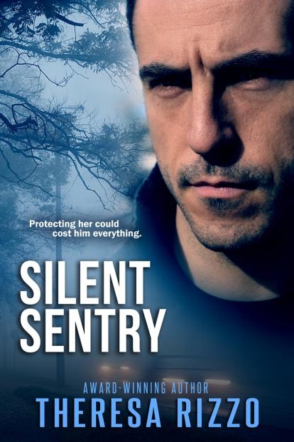 SilentSentry_800